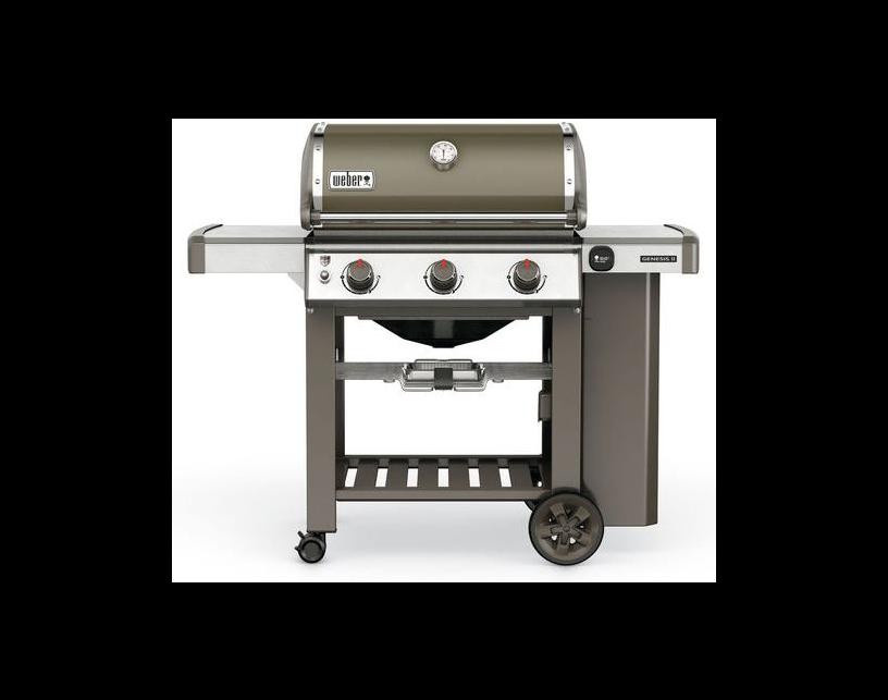 Barbecue Genesis II E-310